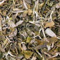 China Spezial weißer Tee China Snow Buds