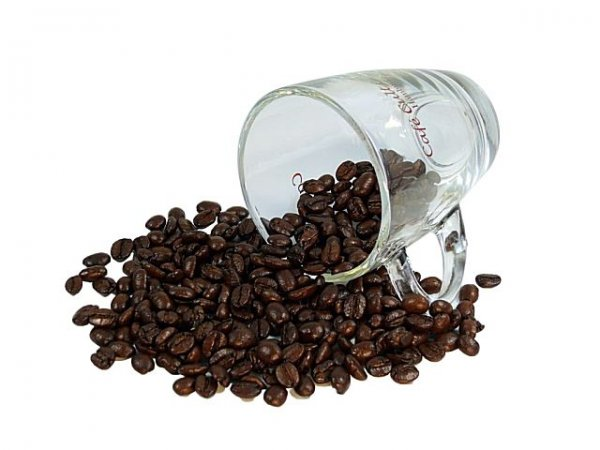 "Cafe Cult Kaffee ""Sweet Orange Vanilla"""