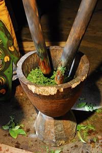 Traditionelle Herstellung von Tee